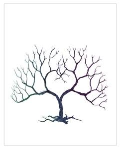 Style unveiled fingerprint tree